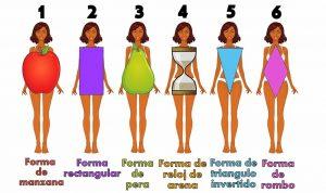 diferentes cuerpos